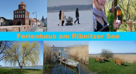 Startbild-2 in Ferienhaus am Ribnitzer See